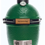Mini Big Green Egg Review