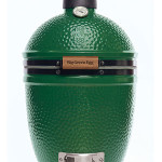Small Big Green Egg Review